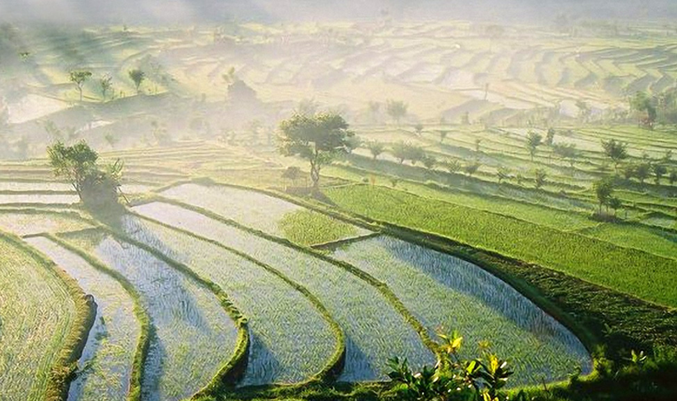 things to do in Bali - Tour inland Bali - the aritsan villages between Kuta to Ubud, the many attractions in Ubud, and its stunningly beautiful landscapes