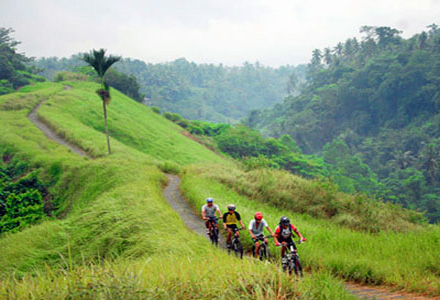 Kintamani cycling tours from Kintamani to Ubud. Expertly arranged by Bali Tour Magic, Kintamani cycling is a great way to explore Kintamani up close!
