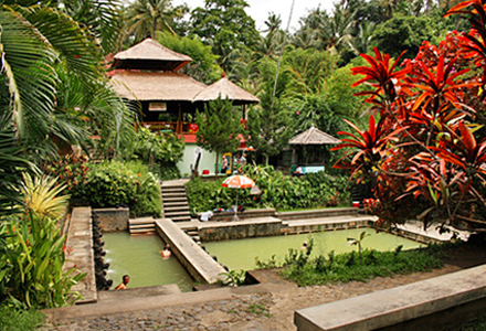 Lovina Tour Banjar Hot Springs on north Bali Lovina tou