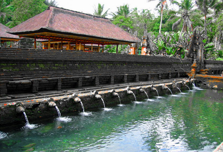 Ubud and Tanah Lot Tour Tirta Empul