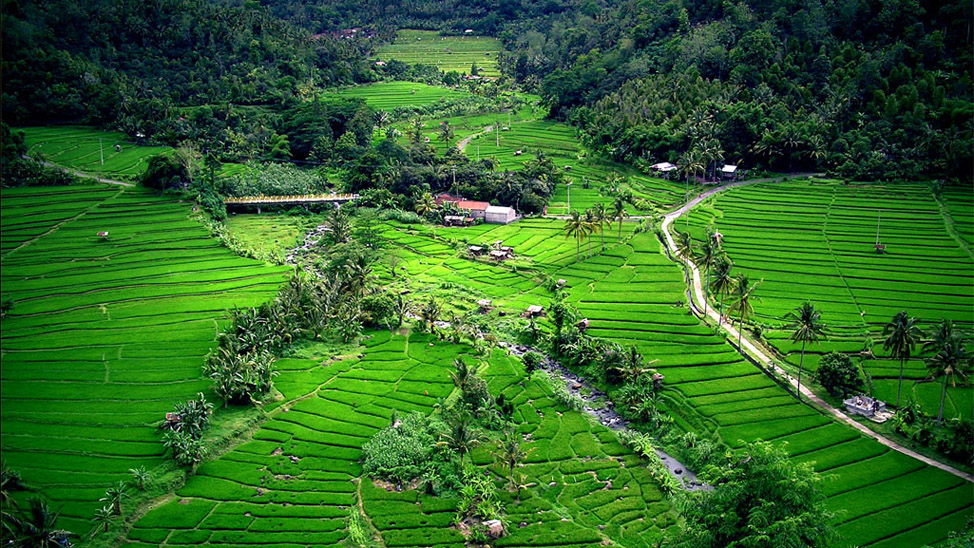 things to do in Bali - Ubud active pursuits