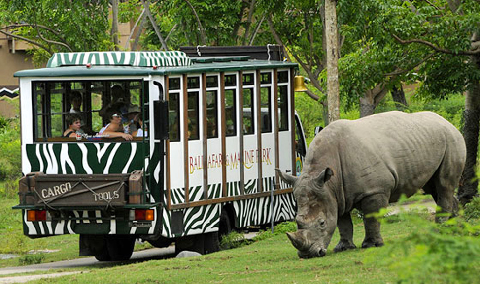 things to do in Bali - Bali Safari Marine Park is an elephant and wildlife park near Ubud