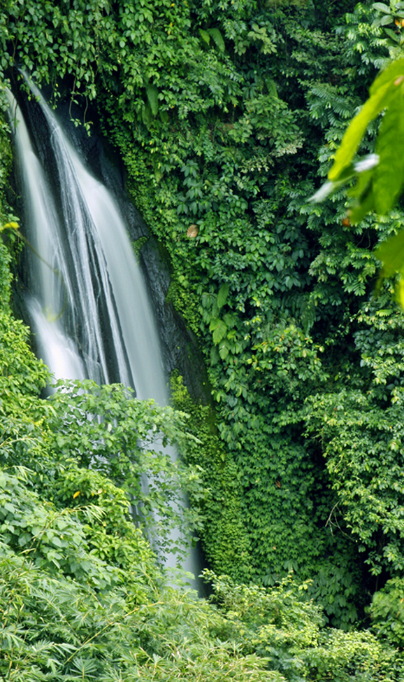 Things to do in Bali - Air Terjun Kuning Waterfall (Yellow Waterfall), a little off the tourist trek but can be customised in a full day Besakih tour.