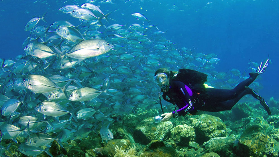 things to do in Bali - East Bali coastal tours offer world famous snorkelling & dive sites, access to Penida and Lembongan, and a less touristy experience.