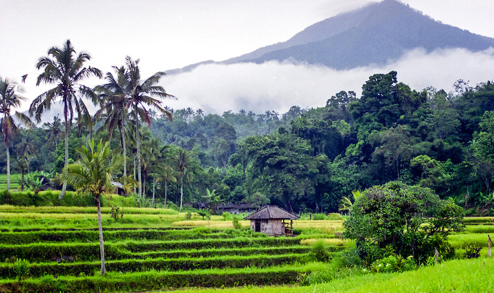 things to do in Bali, views from Jatiluwih, north Bali