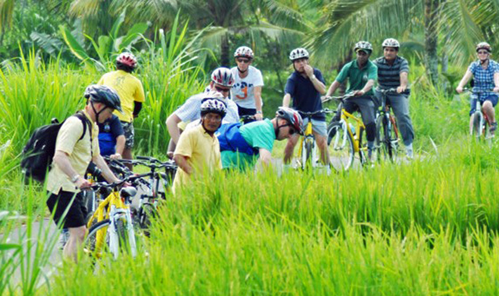 things to do in Bali - Ubud cylcing