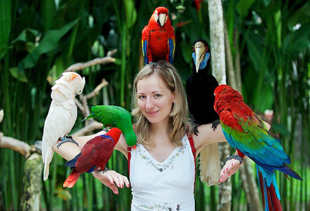 Bali Bird Park interactive fun for bird lovers