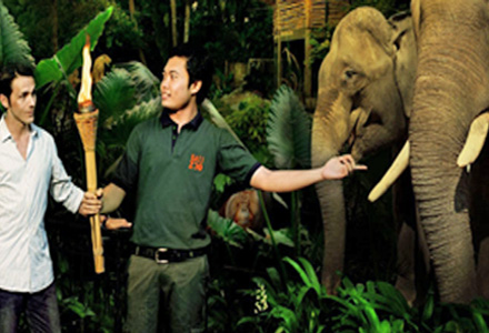 Bali Zoowilight Tour night safari